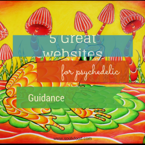 5 Great Websites for Psychedelic Guidance